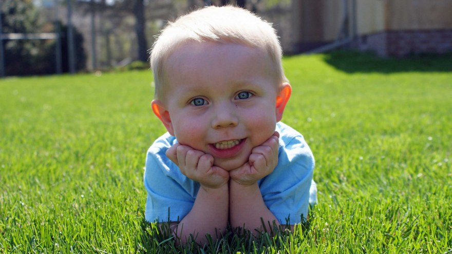 Picture of kid in grass