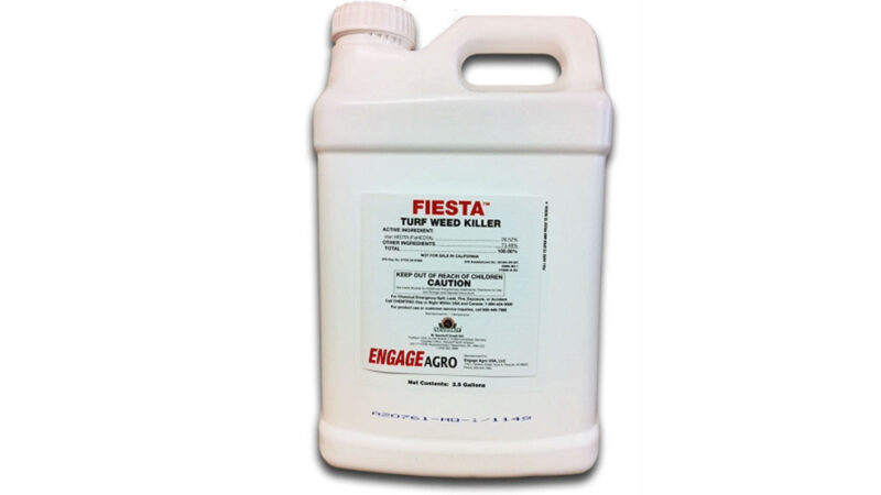 Fiesta Weed Spray