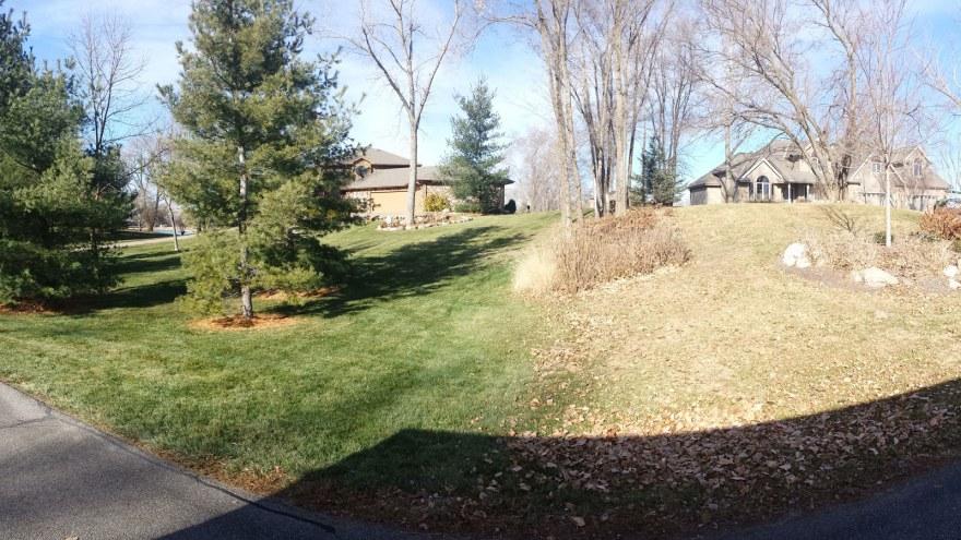 Green Grass In December